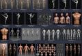 美术绘画 艺用三维3D人体雕塑解剖 肌肉骨骼结构 参考资料图片picture